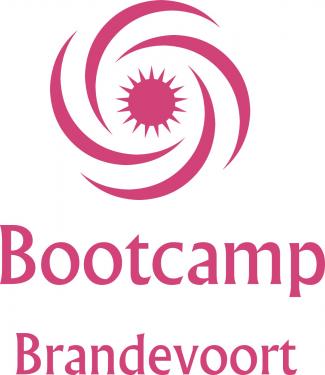 Bootcamp Brandevoort / Obstacle Walhalla